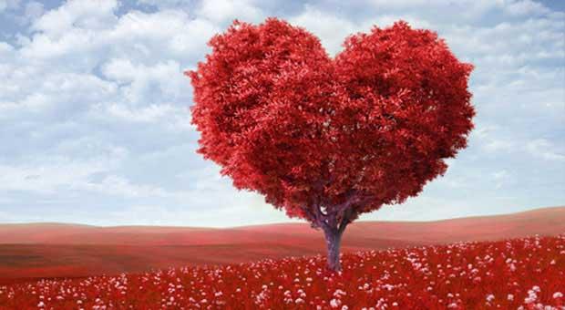 Paquete especial San Valentín